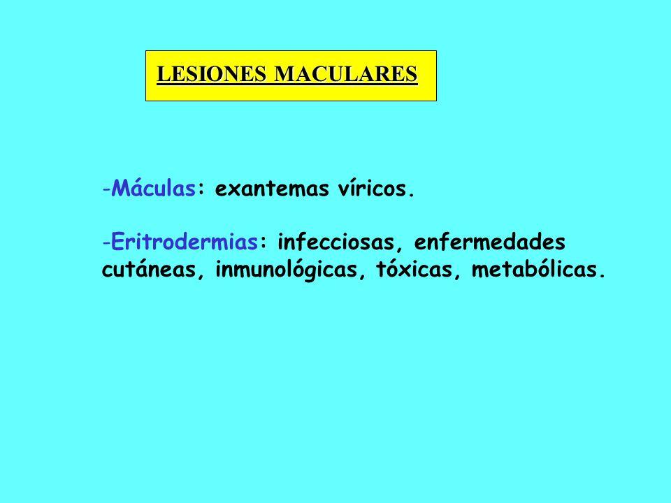- -Máculas: exantemas víricos. LESIONES MACULARES - -Eritrodermias: infecciosas, enfermedades cutáneas, inmunológicas, tóxicas, metabólicas.