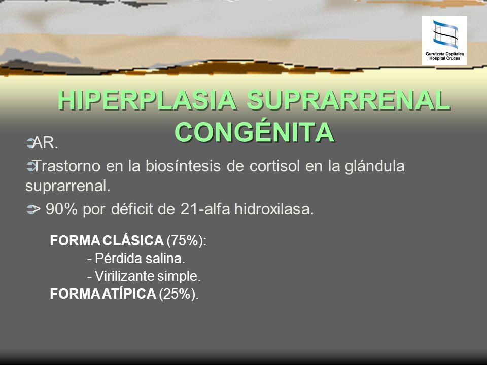 HIPERPLASIA SUPRARRENAL CONGÉNITA AR. Trastorno en la biosíntesis de cortisol en la glándula suprarrenal. > 90% por déficit de 21-alfa hidroxilasa. FO
