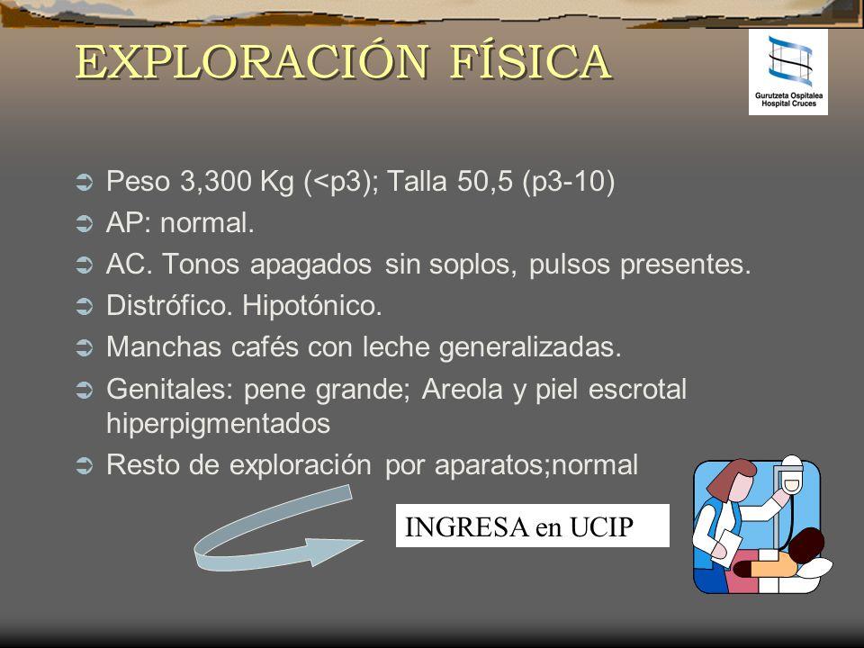 EXPLORACIÓN FÍSICA Peso 3,300 Kg (<p3); Talla 50,5 (p3-10) AP: normal. AC. Tonos apagados sin soplos, pulsos presentes. Distrófico. Hipotónico. Mancha