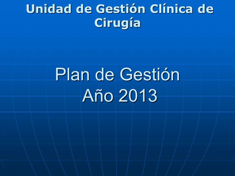 Plan de Gestión Año 2013 Unidad de Gestión Clínica de Cirugía