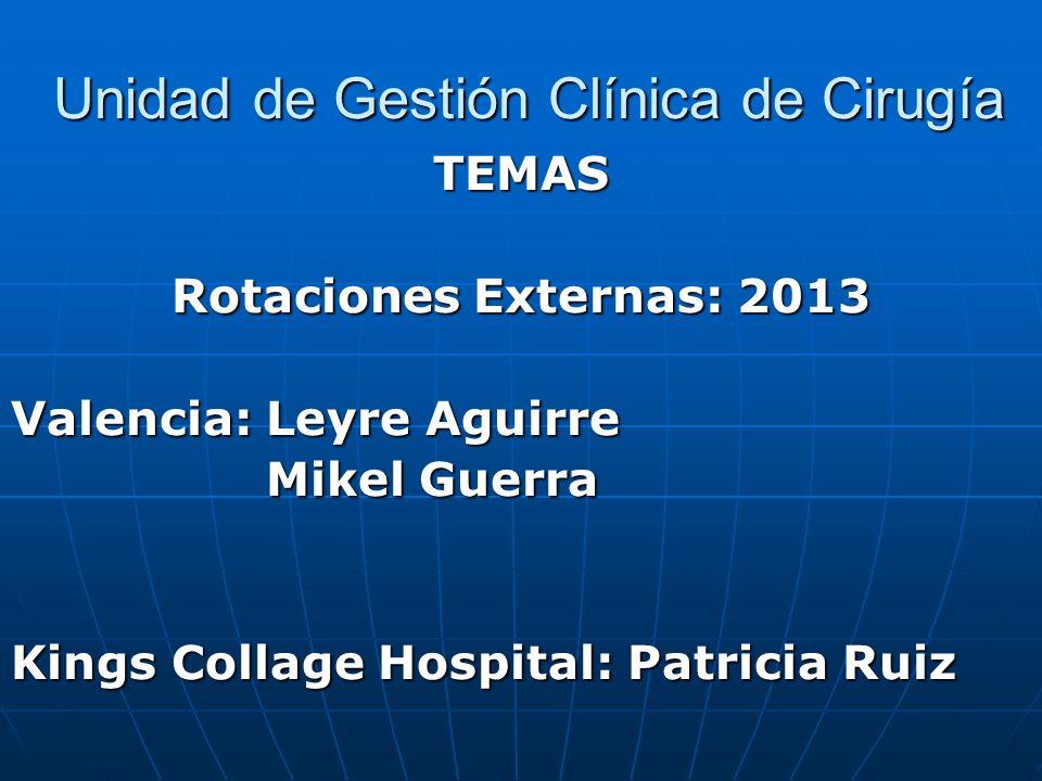 Unidad de Gestión Clínica de Cirugía Unidad de Gestión Clínica de Cirugía TEMAS Rotaciones Externas: 2013 Valencia: Leyre Aguirre Mikel Guerra Mikel G