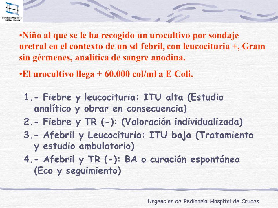 Urgencias de Pediatría.Hospital de Cruces 1.- Fiebre y leucocituria: ITU alta (Estudio analítico y obrar en consecuencia) 2.- Fiebre y TR (-): (Valora
