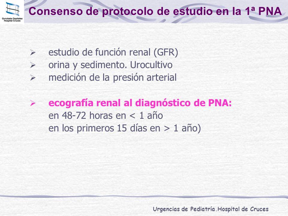 Urgencias de Pediatría.Hospital de Cruces Consenso de protocolo de estudio en la 1ª PNA estudio de función renal (GFR) orina y sedimento. Urocultivo m