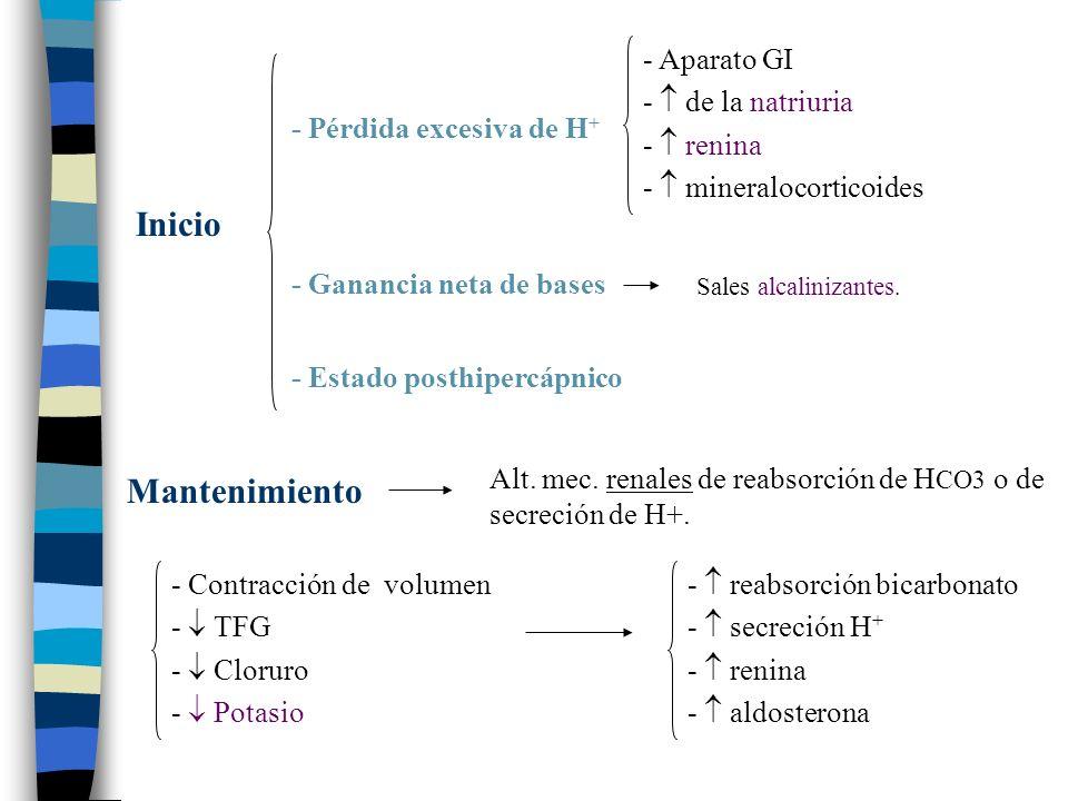 - Pérdida excesiva de H + - Ganancia neta de bases - Estado posthipercápnico Inicio - Aparato GI - de la natriuria - renina - mineralocorticoides Alt.