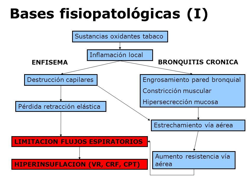 Bases fisiopatológicas (I) Sustancias oxidantes tabaco Inflamación local Destrucción capilares Pérdida retracción elástica Engrosamiento pared bronqui