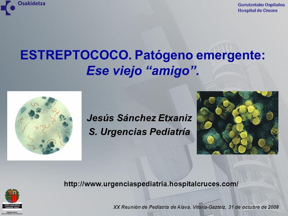 Gurutzetako Ospitalea Hospital de Cruces XX Reunión de Pediatría de Alava. Vitoria-Gazteiz, 31 de octubre de 2008 ESTREPTOCOCO. Patógeno emergente: Es
