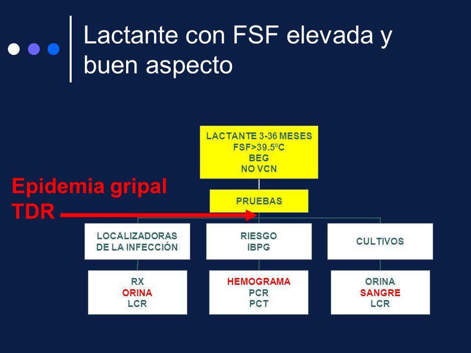 LACTANTE 3-36 MESES FSF>39.5ºC BEG NO VCN PRUEBAS LOCALIZADORAS DE LA INFECCIÓN RX ORINA LCR RIESGO IBPG HEMOGRAMA PCR PCT CULTIVOS ORINA SANGRE LCR E