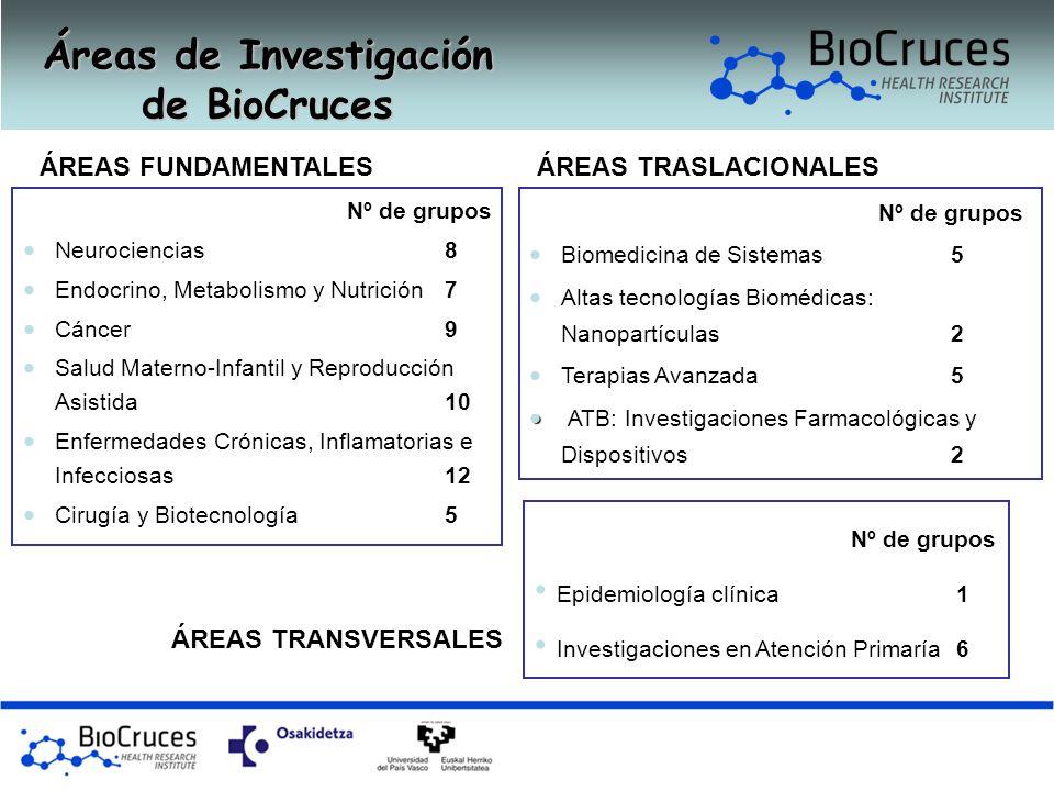 Áreas de Investigación de BioCruces ÁREAS FUNDAMENTALES Nº de grupos Neurociencias 8 Endocrino, Metabolismo y Nutrición7 Cáncer9 Salud Materno-Infanti