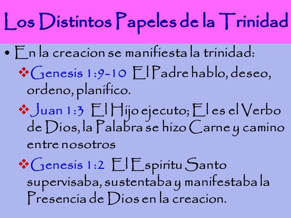 Los Distintos Papeles de la Trinidad En la creacion se manifiesta la trinidad: Genesis 1:9-10 El Padre hablo, deseo, ordeno, planifico. Juan 1:3 El Hi