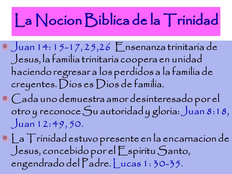 La Nocion Biblica de la Trinidad Juan 14: 15-17, 25,26 Ensenanza trinitaria de Jesus, la familia trinitaria coopera en unidad haciendo regresar a los