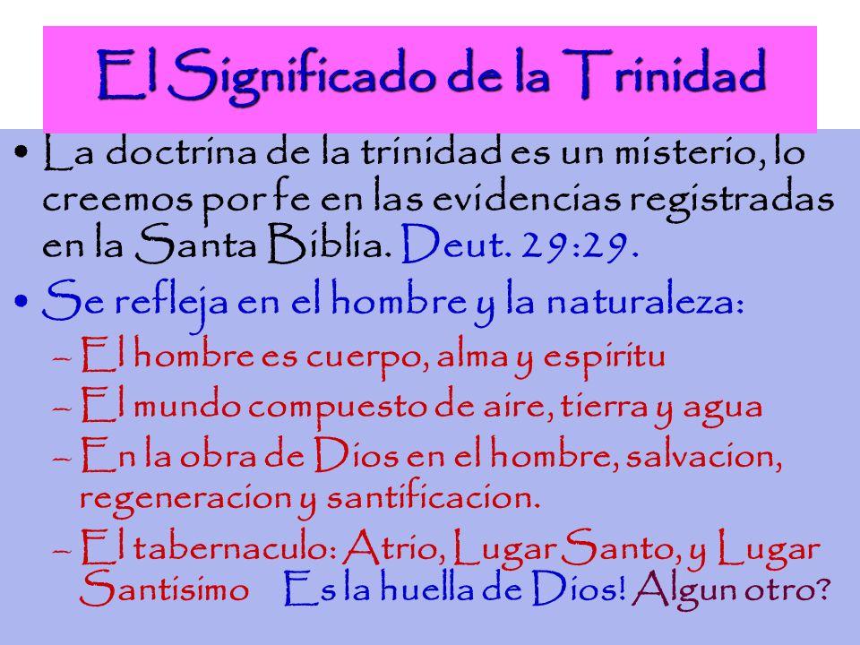 Los Distintos Papeles de la Trinidad En nuestra salvacion se manifiesta la trinidad: Dios Padre amo al mundo y envio a Su Hijo Juan- 3:16-17 Jesus viene para hacer la voluntad del Padre Juan 6:38 Padre e hijo envian al Espiritu Santo Juan 14:6, Juan 16:7