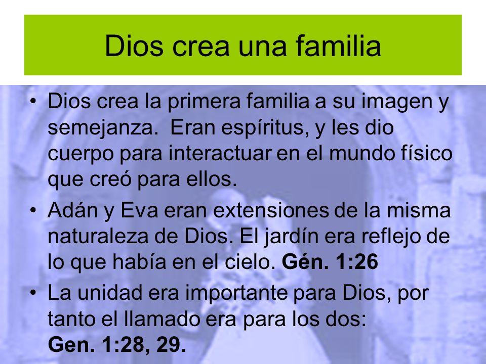 Dios crea una familia Dios crea la primera familia a su imagen y semejanza. Eran espíritus, y les dio cuerpo para interactuar en el mundo físico que c