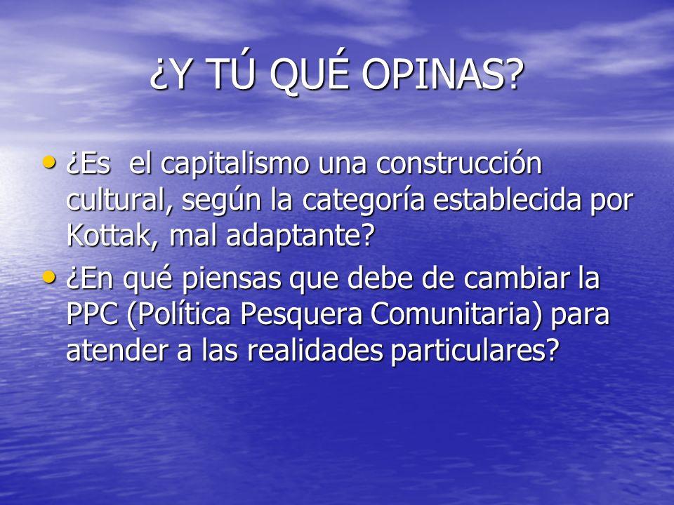 ¿Y TÚ QUÉ OPINAS? ¿Es el capitalismo una construcción cultural, según la categoría establecida por Kottak, mal adaptante? ¿Es el capitalismo una const