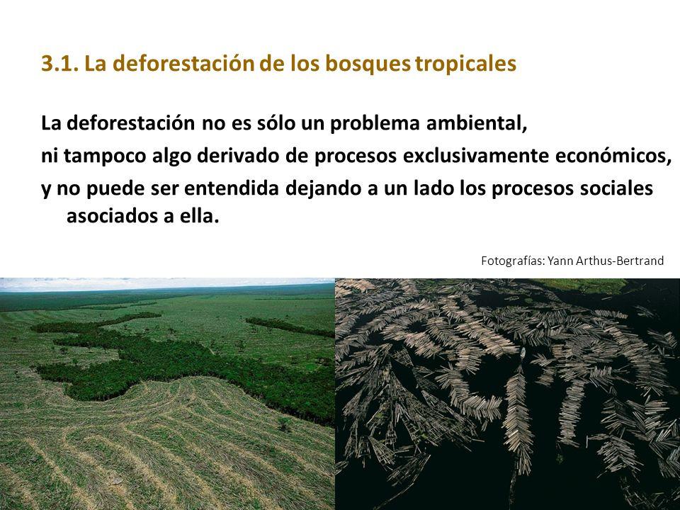 3.1. La deforestación de los bosques tropicales La deforestación no es sólo un problema ambiental, ni tampoco algo derivado de procesos exclusivamente