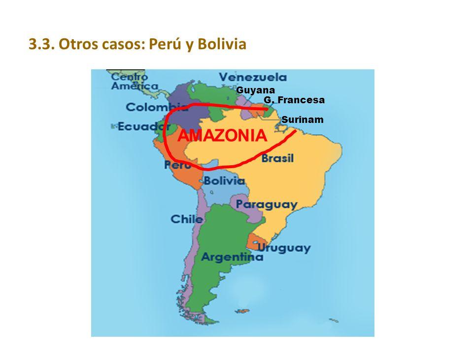 AMAZONIA Guyana G. Francesa Surinam 3.3. Otros casos: Perú y Bolivia