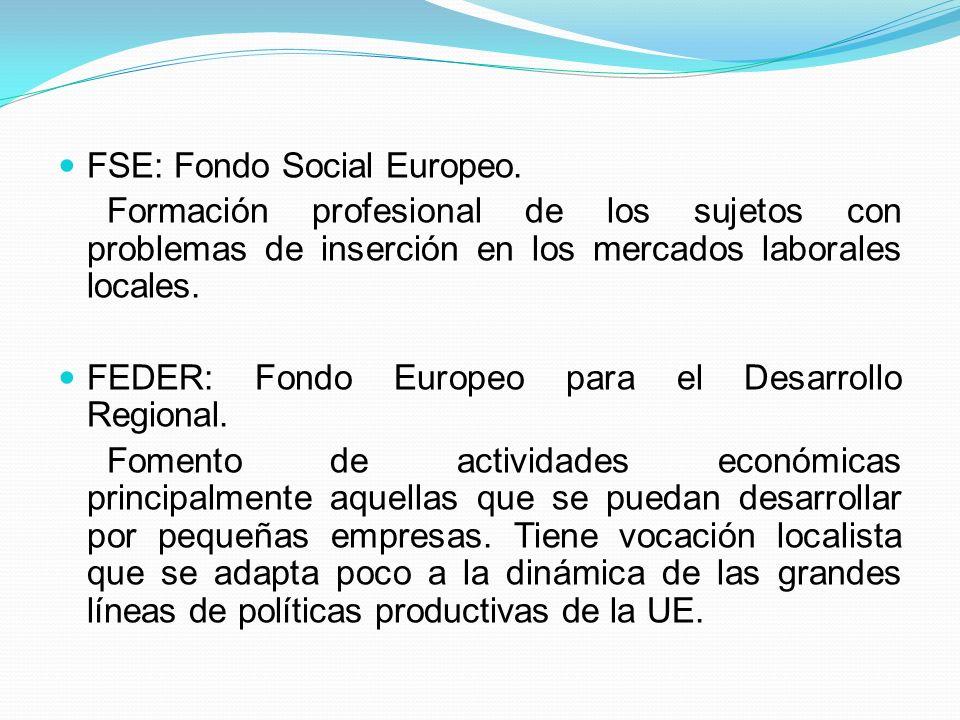 FSE: Fondo Social Europeo. Formación profesional de los sujetos con problemas de inserción en los mercados laborales locales. FEDER: Fondo Europeo par