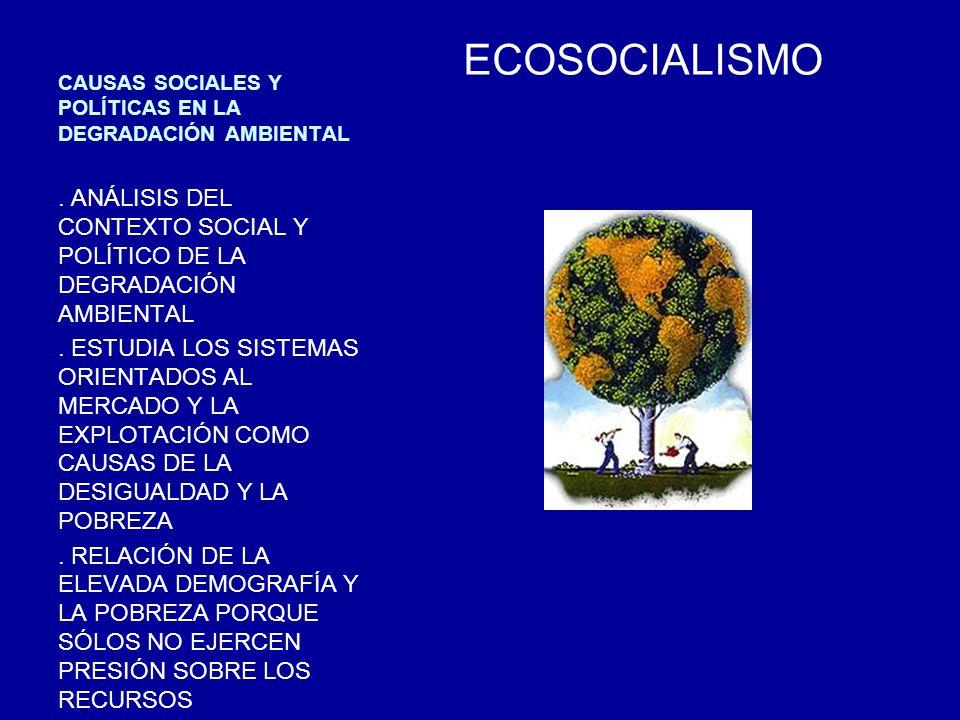 http://www.fao.org/http://www.fao.org/ Fuente: Instituto Nacional de Investigación Espacial, Brasil, 2004
