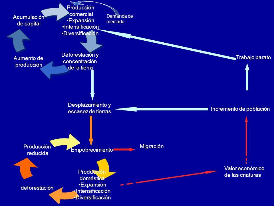 URBANIZACIÓN Y POBREZA URBANIZACIÓN – MIGRACIONES INTERNAS (Entorno rural Entorno urbano) MIGRANTES (Pobreza) CONCENTRACIÓN SUBURBIAL