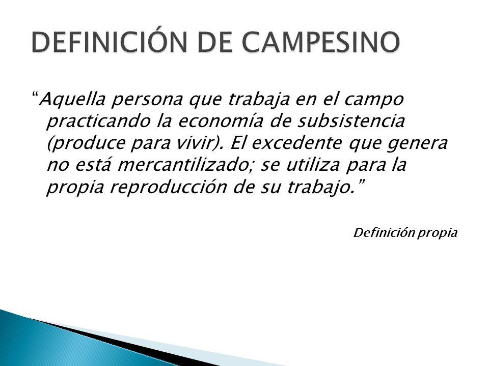 DEFINICIÓN DE CAMPESINO Aquella persona que trabaja en el campo practicando la economía de subsistencia (produce para vivir). El excedente que genera