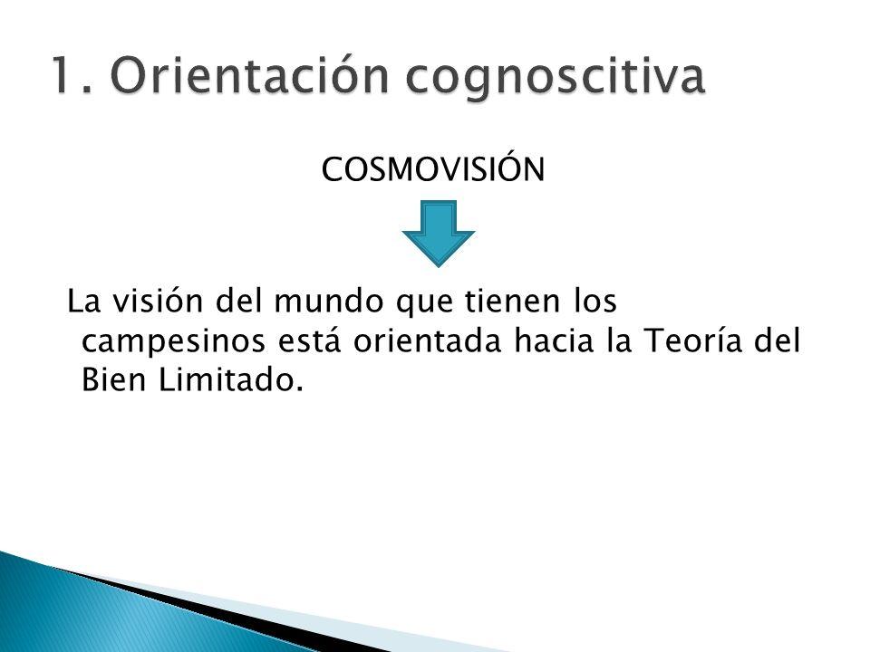 1. Orientación cognoscitiva COSMOVISIÓN La visión del mundo que tienen los campesinos está orientada hacia la Teoría del Bien Limitado.