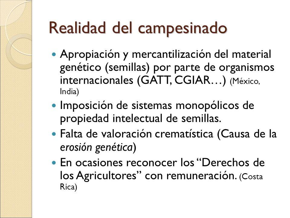 Realidad del campesinado Apropiación y mercantilización del material genético (semillas) por parte de organismos internacionales (GATT, CGIAR…) (Méxic
