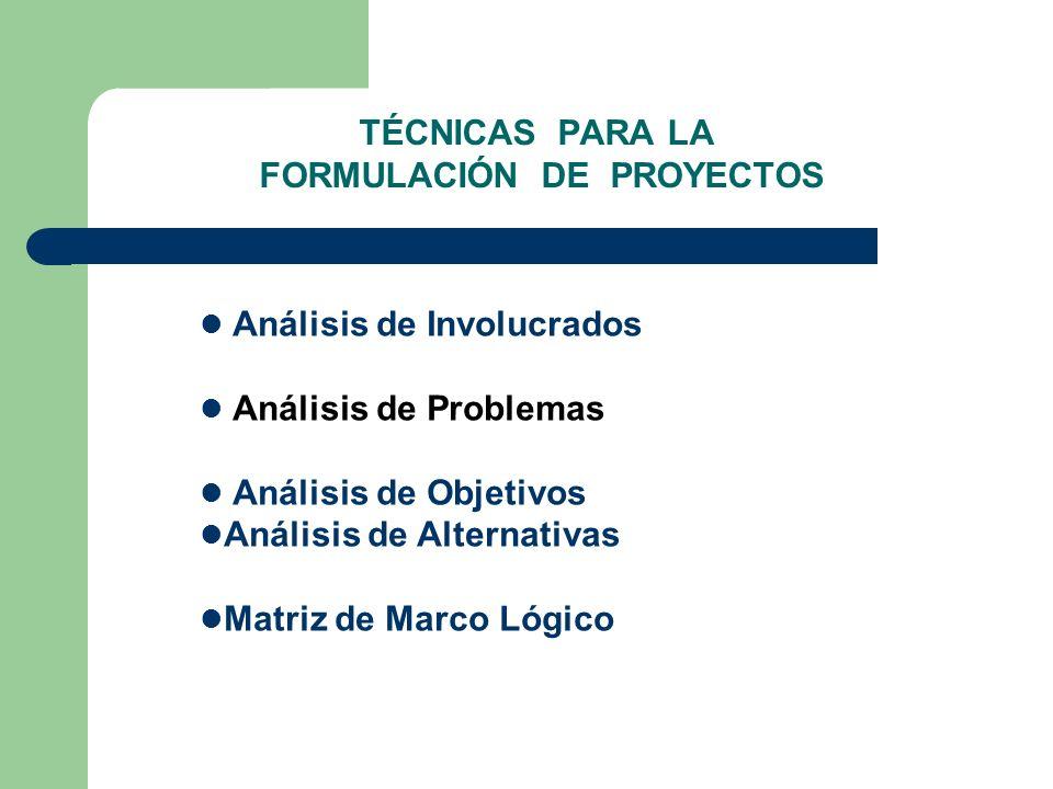 ANÁLISIS DE PROBLEMAS Es una técnica para: analizar la situación existente en relación con la problemática en la forma que la perciben los involucrados.