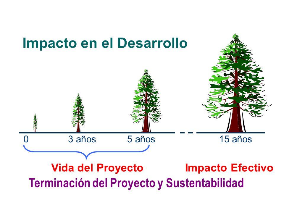 Impacto en el Desarrollo Terminación del Proyecto y Sustentabilidad 0 15 años5 años3 años Impacto EfectivoVida del Proyecto