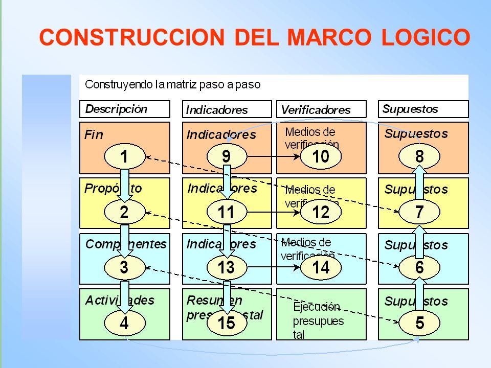 CONSTRUCCION DEL MARCO LOGICO