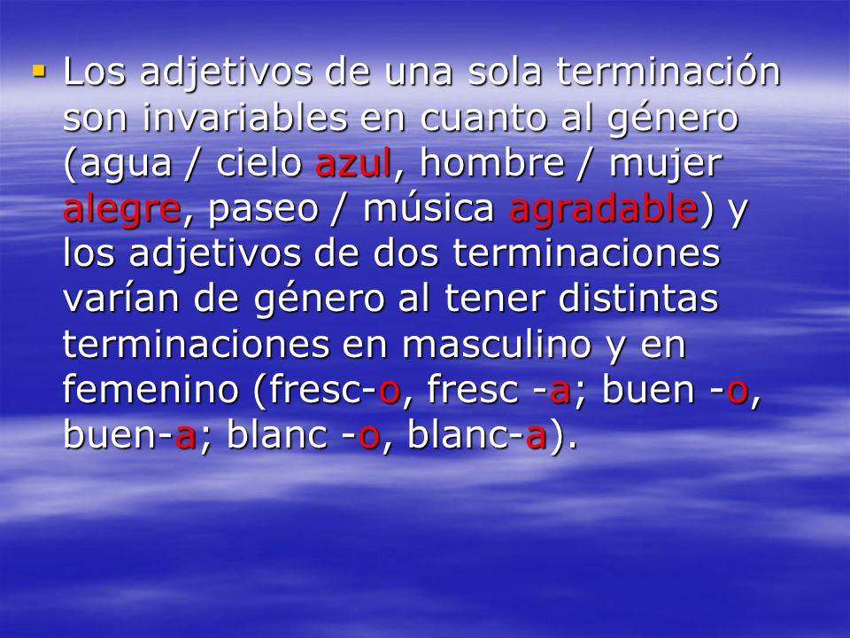 Los adjetivos de una sola terminación son invariables en cuanto al género (agua / cielo azul, hombre / mujer alegre, paseo / música agradable) y los a