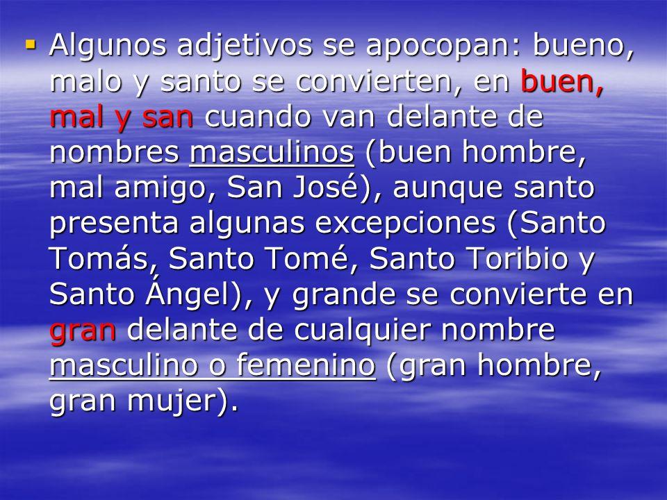 Algunos adjetivos se apocopan: bueno, malo y santo se convierten, en buen, mal y san cuando van delante de nombres masculinos (buen hombre, mal amigo,