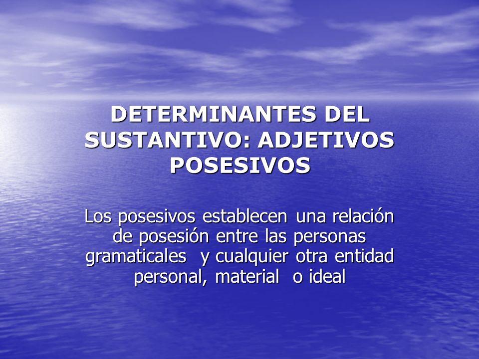DETERMINANTES DEL SUSTANTIVO: ADJETIVOS POSESIVOS Los posesivos establecen una relación de posesión entre las personas gramaticales y cualquier otra e