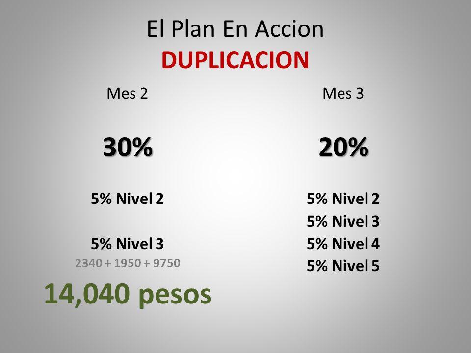 El Plan En Accion DUPLICACION Mes 230% 5% Nivel 2 5% Nivel 3 2340 + 1950 + 9750 14,040 pesos Mes 320% 5% Nivel 2 5% Nivel 3 5% Nivel 4 5% Nivel 5