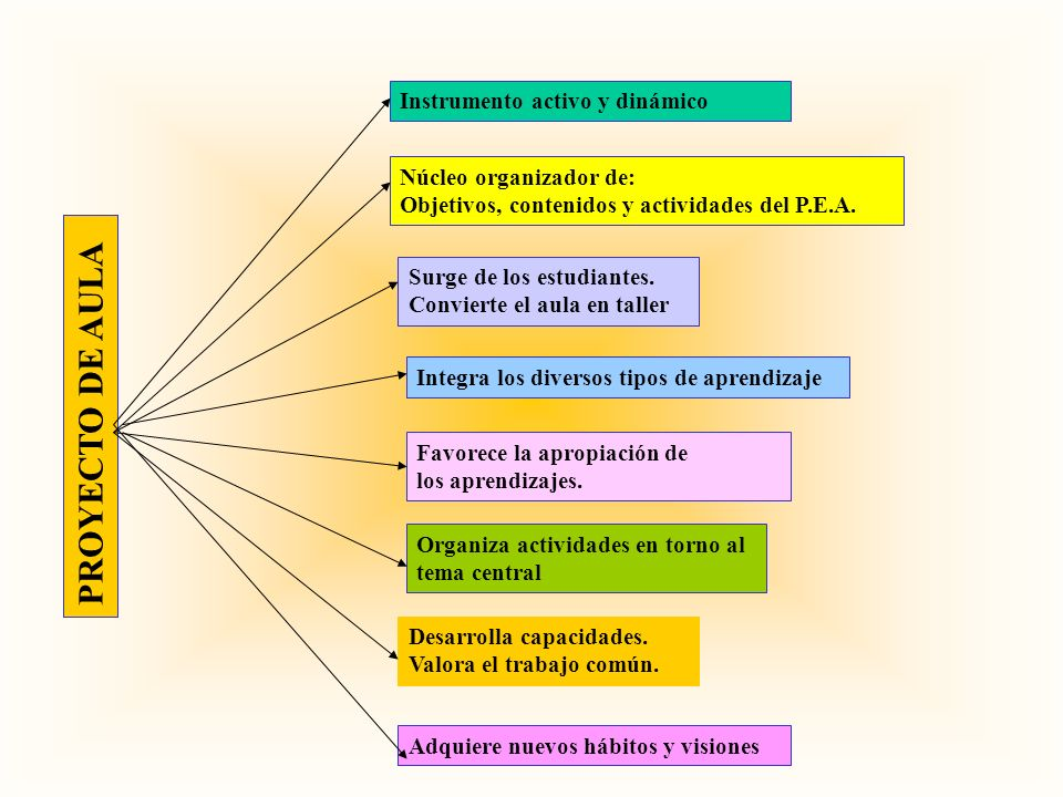 P R O Y E C T O D E A U L A Instrumento activo y dinámico Núcleo organizador de: Objetivos, contenidos y actividades del P.E.A. Surge de los estudiant