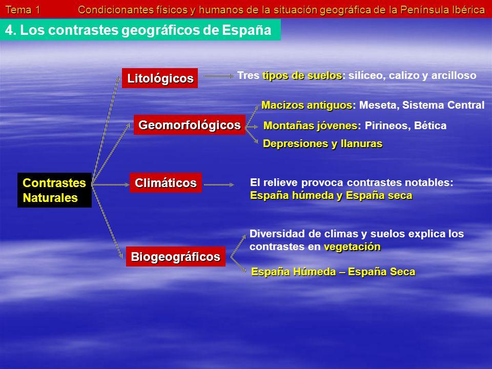 Tema 1 Condicionantes físicos y humanos de la situación geográfica de la Península Ibérica 4. Los contrastes geográficos de España Contrastes Naturale