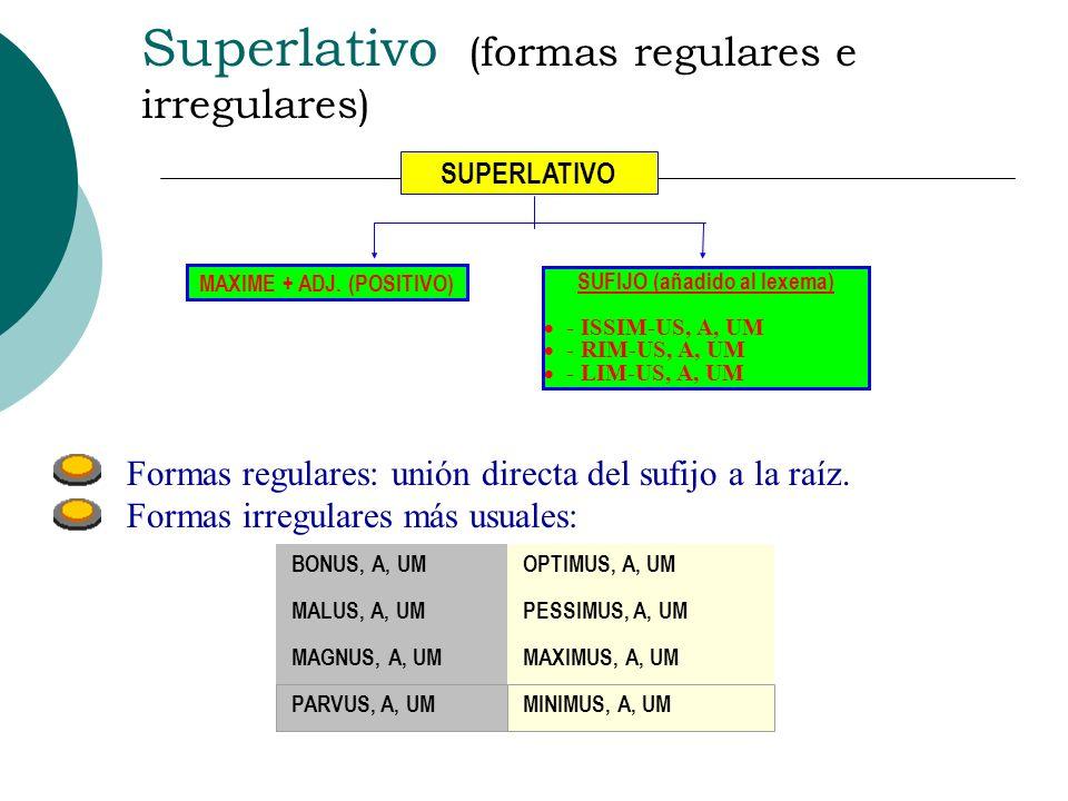NOTAS N unca llevan sufijo los adjetivos terminados en -eus / -uus / -ius. Si se comparan cualidades, ambos adjetivos aparecen en grado comparativo. S