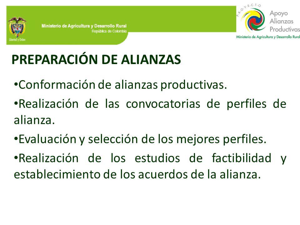 Ministerio de Agricultura y Desarrollo Rural República de Colombia PREPARACIÓN DE ALIANZAS Conformación de alianzas productivas. Realización de las co