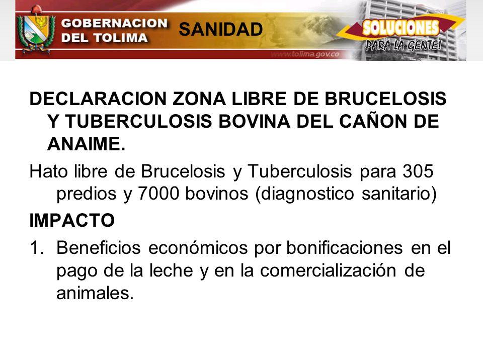 DECLARACION ZONA LIBRE DE BRUCELOSIS Y TUBERCULOSIS BOVINA DEL CAÑON DE ANAIME. Hato libre de Brucelosis y Tuberculosis para 305 predios y 7000 bovino