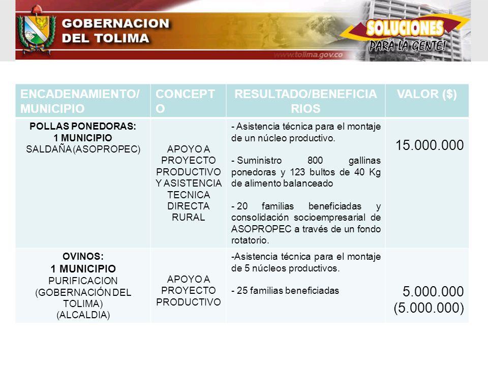 ENCADENAMIENTO/ MUNICIPIO CONCEPT O RESULTADO/BENEFICIA RIOS VALOR ($) POLLAS PONEDORAS: 1 MUNICIPIO SALDAÑA (ASOPROPEC)APOYO A PROYECTO PRODUCTIVO Y