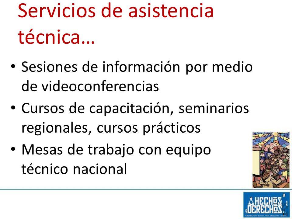 Servicios de asistencia técnica… Sesiones de información por medio de videoconferencias Cursos de capacitación, seminarios regionales, cursos práctico
