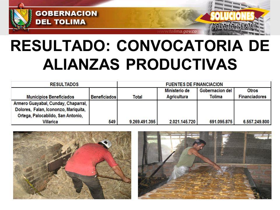 RESULTADO: CONVOCATORIA DE ALIANZAS PRODUCTIVAS