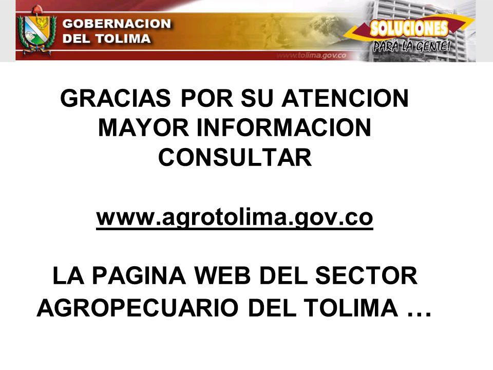 GRACIAS POR SU ATENCION MAYOR INFORMACION CONSULTAR www.agrotolima.gov.co LA PAGINA WEB DEL SECTOR AGROPECUARIO DEL TOLIMA …