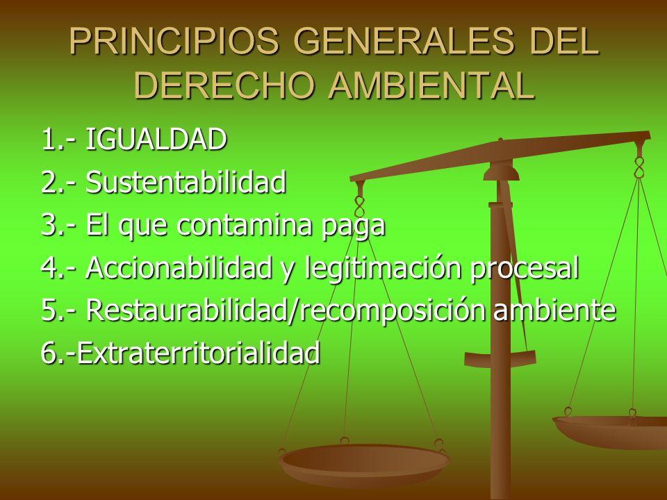 PRINCIPIOS GENERALES DEL DERECHO AMBIENTAL 1.- IGUALDAD 2.- Sustentabilidad 3.- El que contamina paga 4.- Accionabilidad y legitimación procesal 5.- R