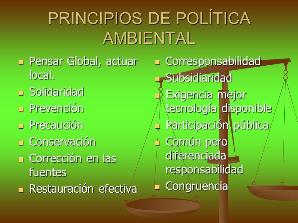 PRINCIPIOS DE POLÍTICA AMBIENTAL Pensar Global, actuar local. Pensar Global, actuar local. Solidaridad Solidaridad Prevención Prevención Precaución Pr