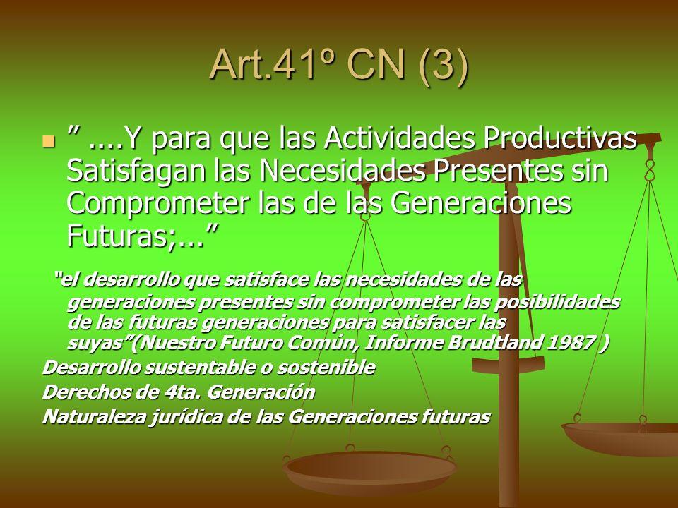 Art.41º CN (3)....Y para que las Actividades Productivas Satisfagan las Necesidades Presentes sin Comprometer las de las Generaciones Futuras;.......Y
