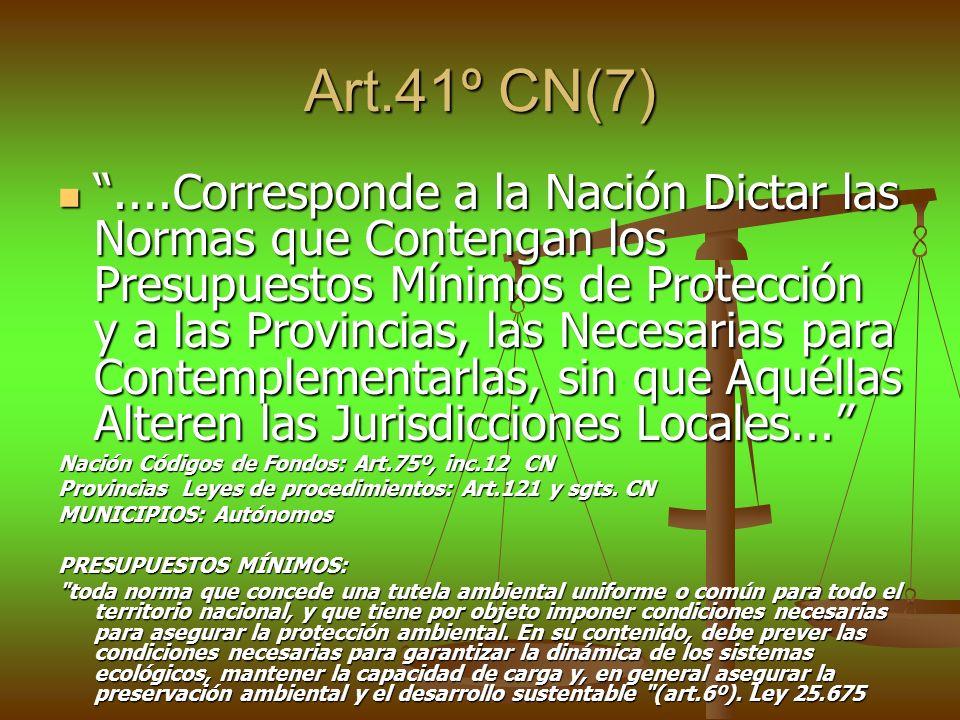 Art.41º CN(7)....Corresponde a la Nación Dictar las Normas que Contengan los Presupuestos Mínimos de Protección y a las Provincias, las Necesarias par
