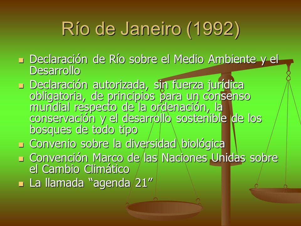Río de Janeiro (1992) Declaración de Río sobre el Medio Ambiente y el Desarrollo Declaración de Río sobre el Medio Ambiente y el Desarrollo Declaració