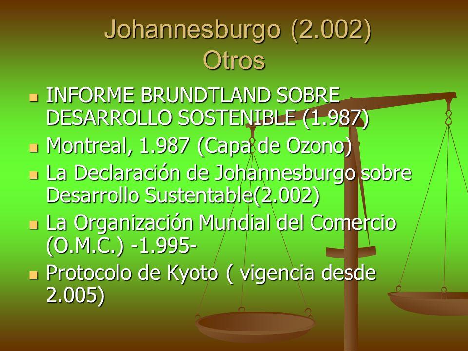 Johannesburgo (2.002) Otros Johannesburgo (2.002) Otros INFORME BRUNDTLAND SOBRE DESARROLLO SOSTENIBLE (1.987) INFORME BRUNDTLAND SOBRE DESARROLLO SOS