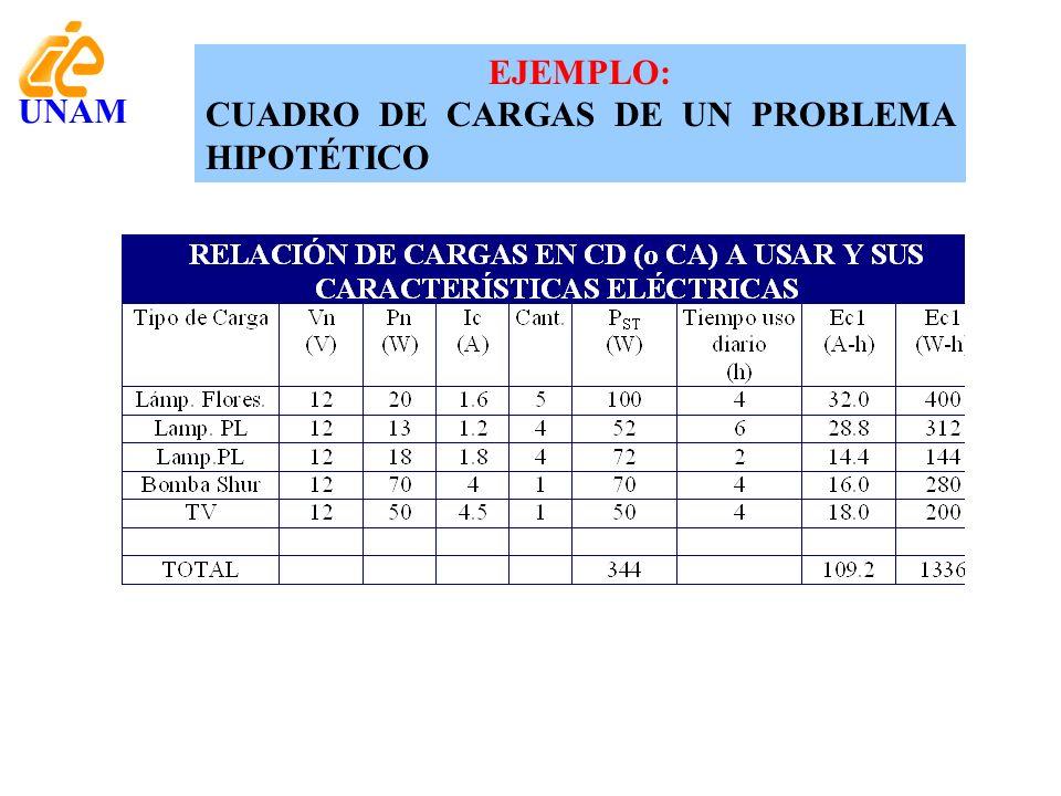 EJEMPLO: CUADRO DE CARGAS DE UN PROBLEMA HIPOTÉTICO UNAM