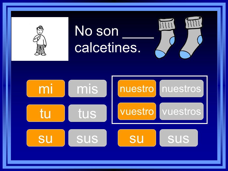 No son ____ calcetines. tu su nuestro su vuestro mimis tus sus nuestros sus vuestros