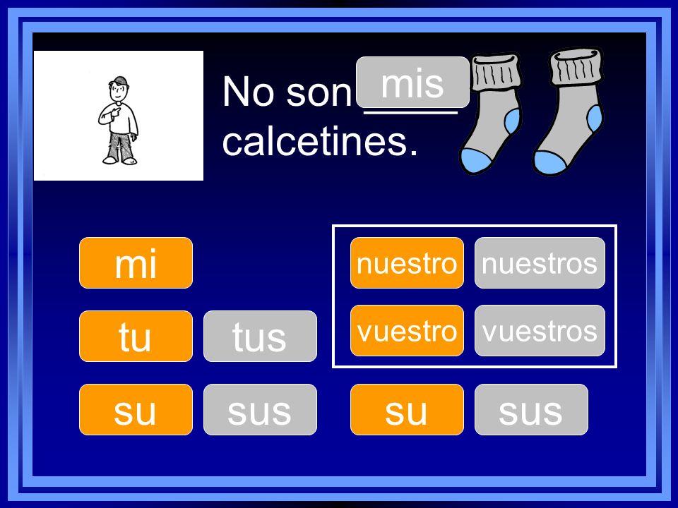 No son ____ calcetines. tu su nuestro su vuestro mi mis tus sus nuestros sus vuestros